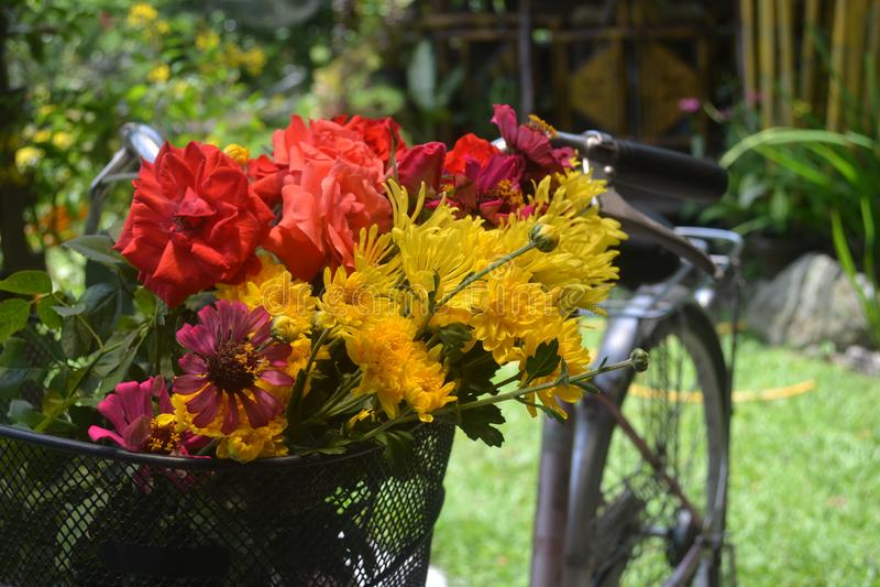Cesta floral fotos de stock