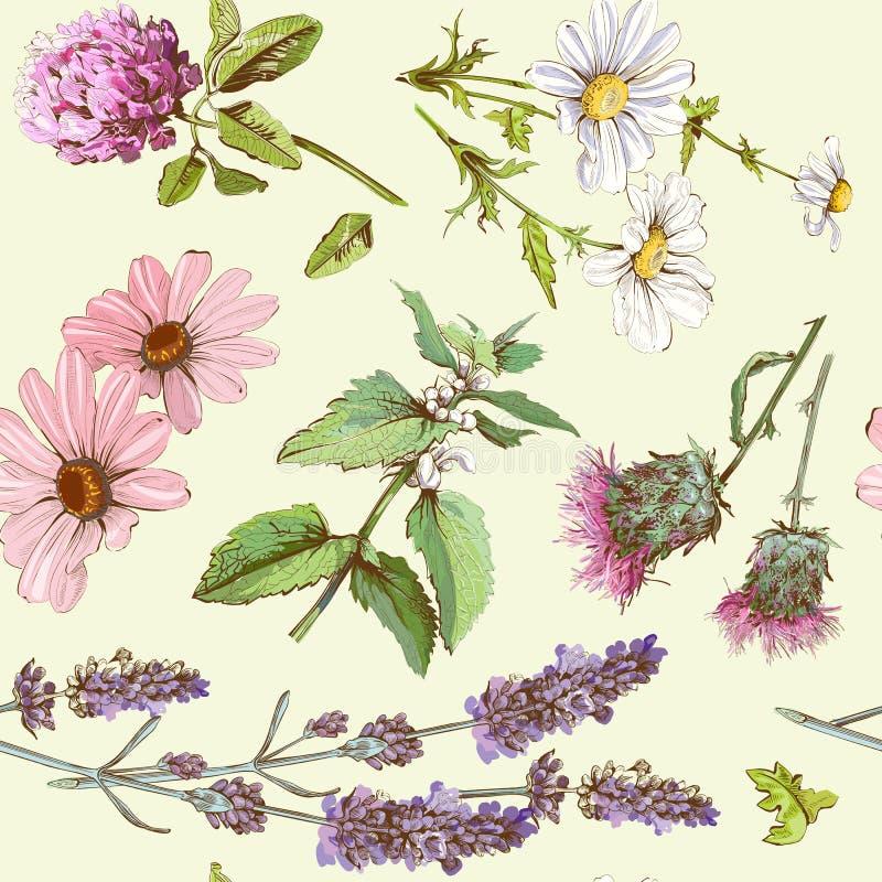 Cesta herbaria de los cosméticos stock de ilustración