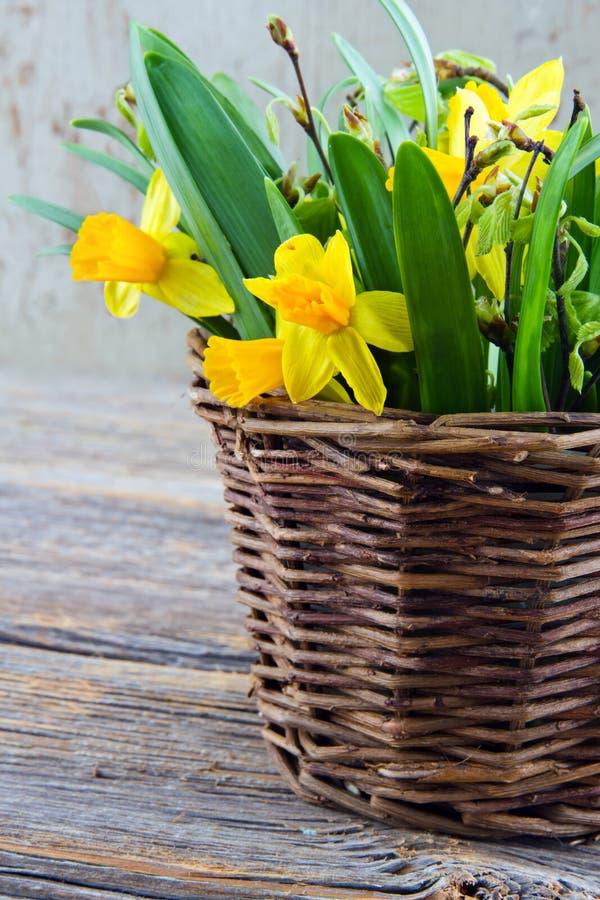 Cesta marrom rústica completamente de daffodils amarelos imagem de stock royalty free