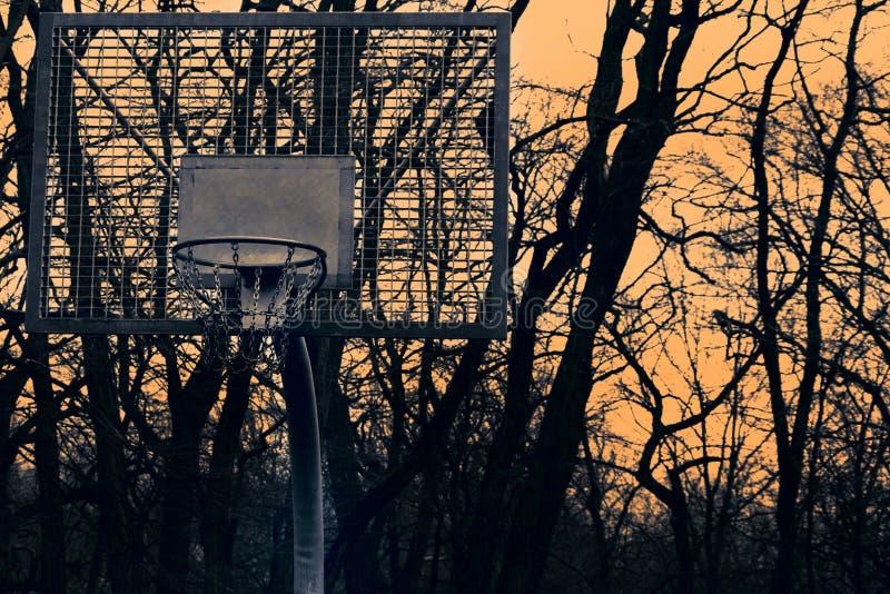 Cesta para o basquetebol no fundo do por do sol e das árvores foto de stock royalty free