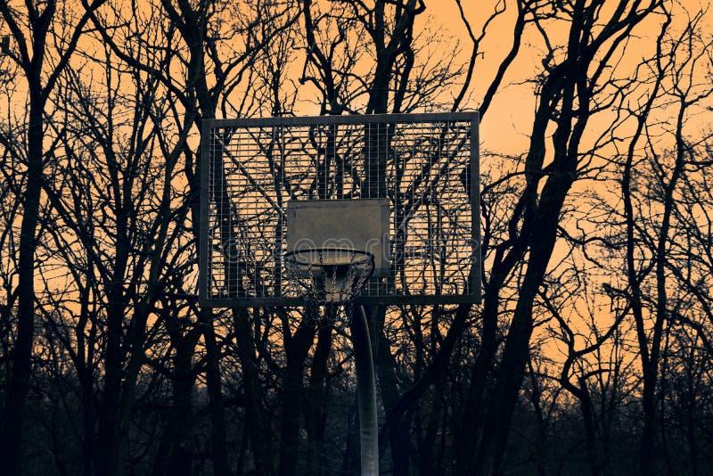 Cesta para o basquetebol no fundo do por do sol e das árvores fotografia de stock