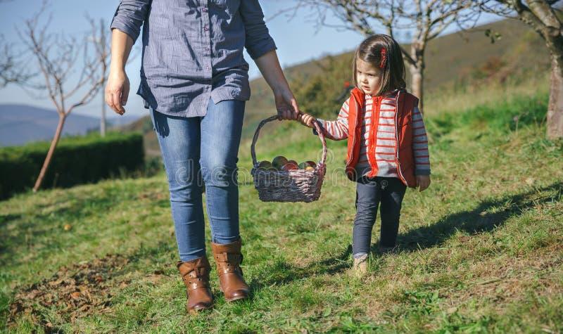 Cesta que lleva de la niña y de la mujer con las manzanas imagen de archivo libre de regalías
