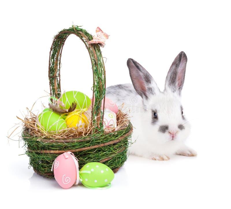 Cesta y conejo de los huevos de Pascua imagenes de archivo