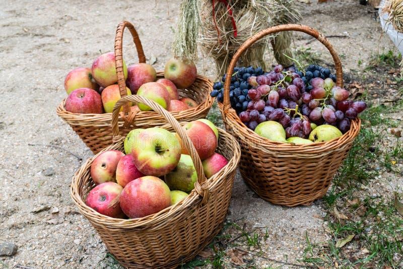 Cestas con las manzanas, las peras y las uvas Cestas con la fruta imágenes de archivo libres de regalías