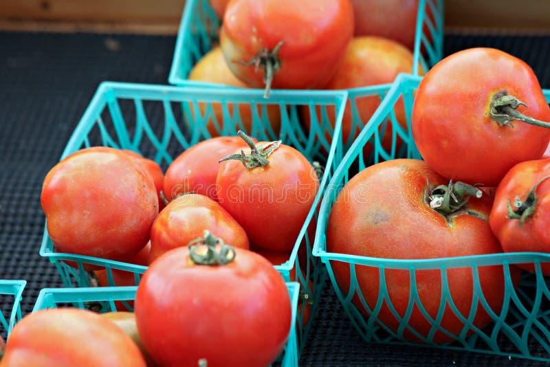 Cestini dei pomodori fotografia stock libera da diritti