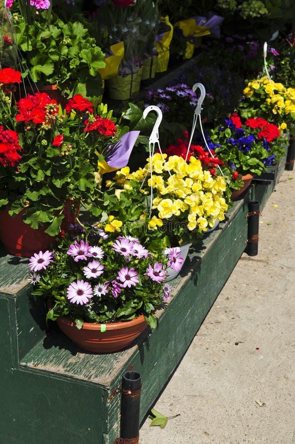 Cestini del fiore da vendere immagine stock