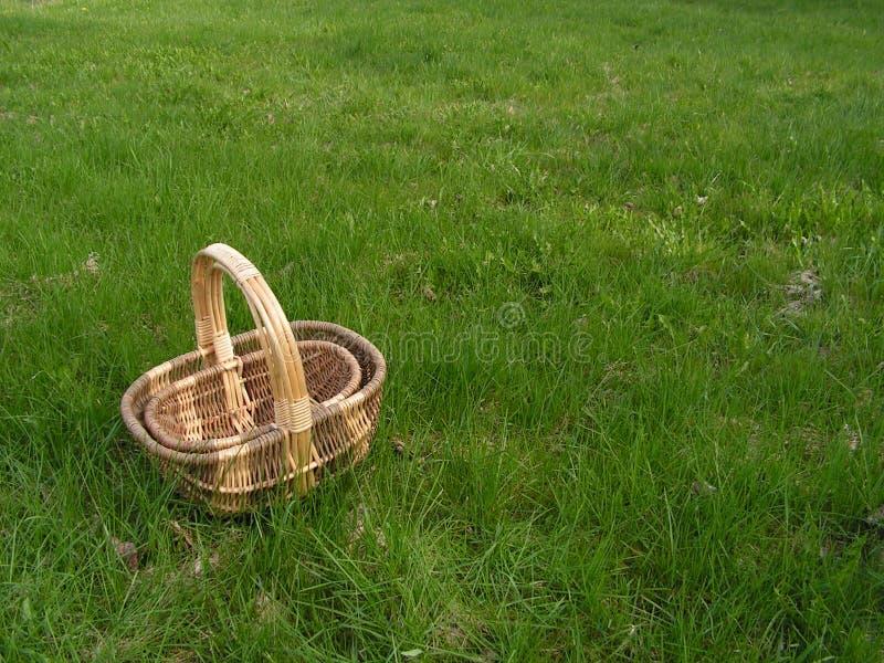 Cestini sull'erba fotografie stock libere da diritti