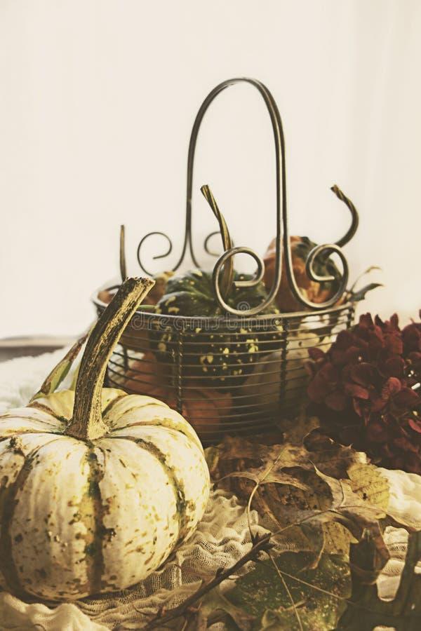 Cestino d'autunno fotografia stock libera da diritti
