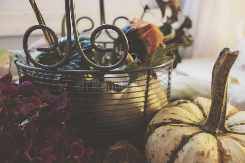 Cestino d'autunno fotografia stock