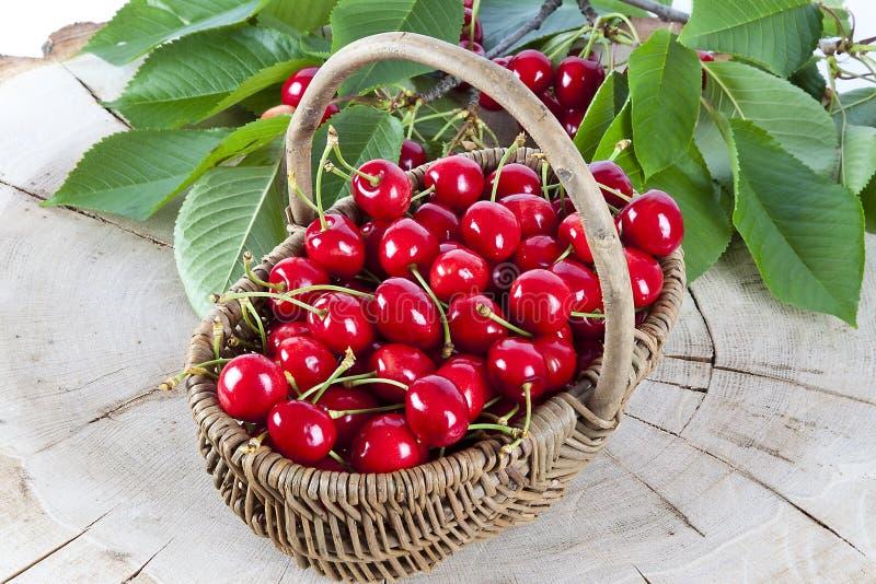 Cestino delle ciliege rosse fotografia stock libera da diritti