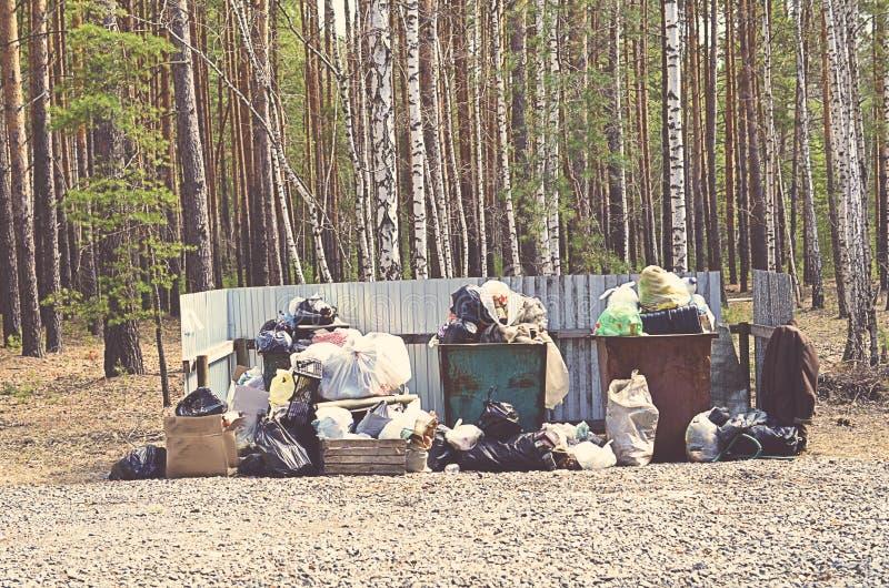 Cestino per i rifiuti in pieno di immondizia nel concetto della foresta del problema di ecologia immagini stock libere da diritti