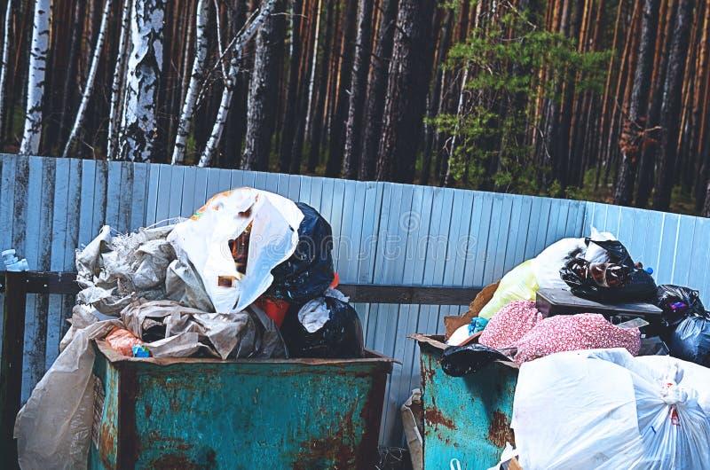Cestino per i rifiuti in pieno di immondizia nel concetto della foresta del problema di ecologia fotografia stock libera da diritti
