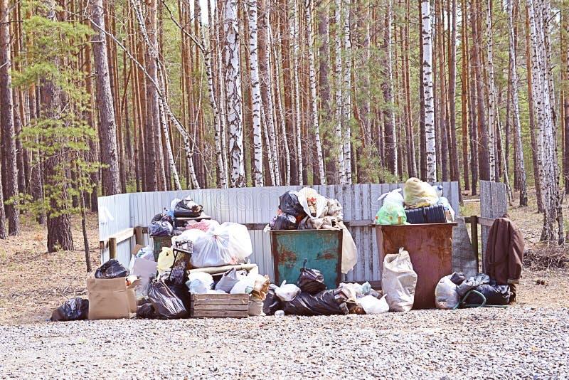 Cestino per i rifiuti in pieno di immondizia nel concetto della foresta del problema di ecologia immagini stock