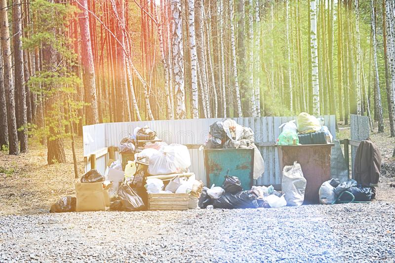 Cestino per i rifiuti in pieno di immondizia nel concetto della foresta del problema di ecologia immagine stock