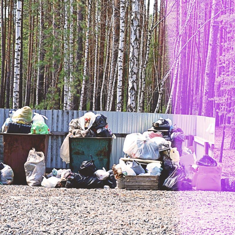 Cestino per i rifiuti in pieno di immondizia nel concetto della foresta del problema di ecologia fotografia stock