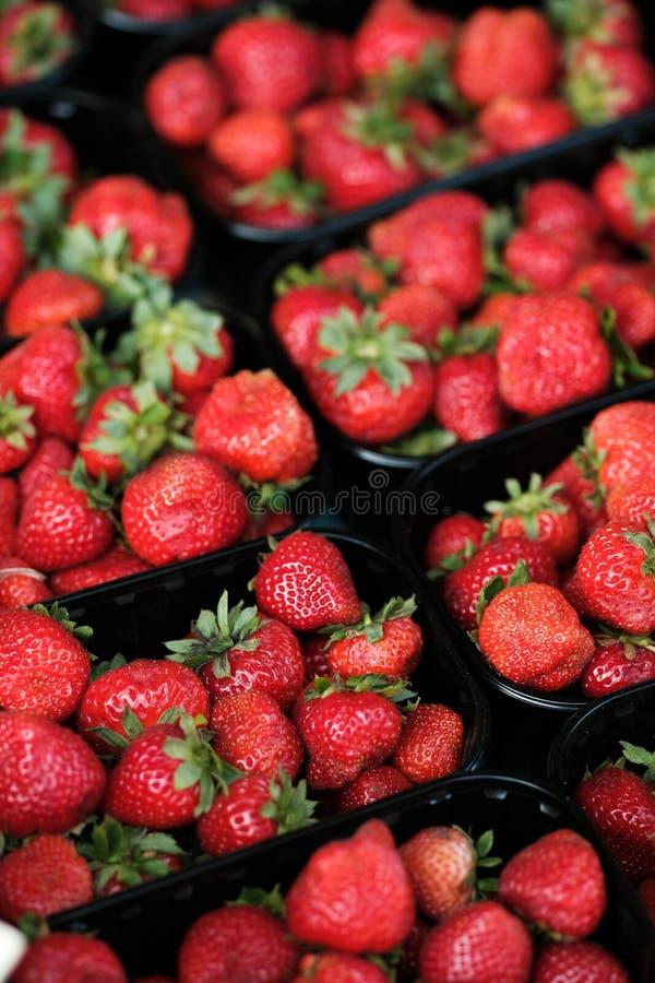Cestos com morango delicioso fresco Airelas de Verão desagradáveis - uma fonte de vitaminas fotos de stock royalty free