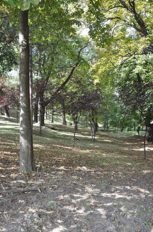 Cetatuia Park in Cluj-Napoca town from Transylvania region in Romania royalty free stock photos