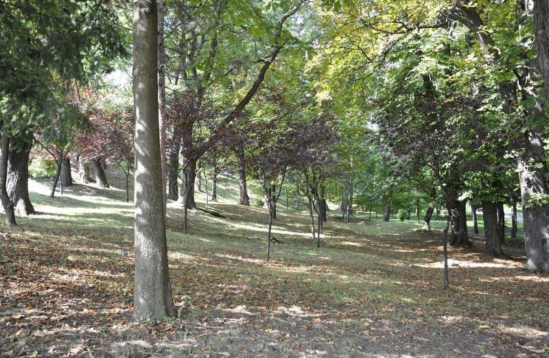 Cetatuia Park in Cluj-Napoca town from Transylvania region in Romania royalty free stock image