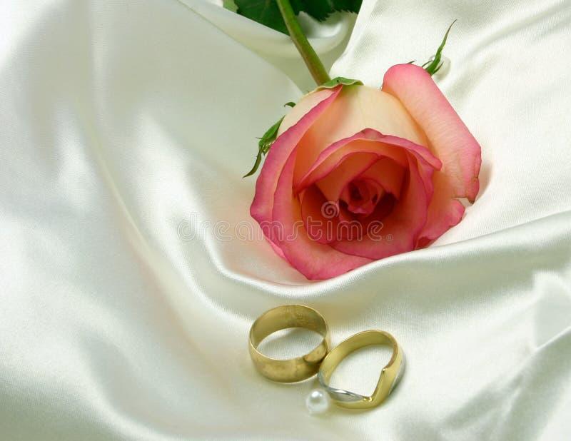 Cetim dos anéis e uma rosa imagem de stock royalty free