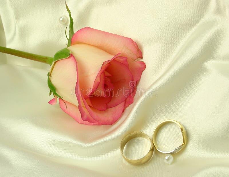 Cetim dos anéis e uma rosa fotos de stock royalty free
