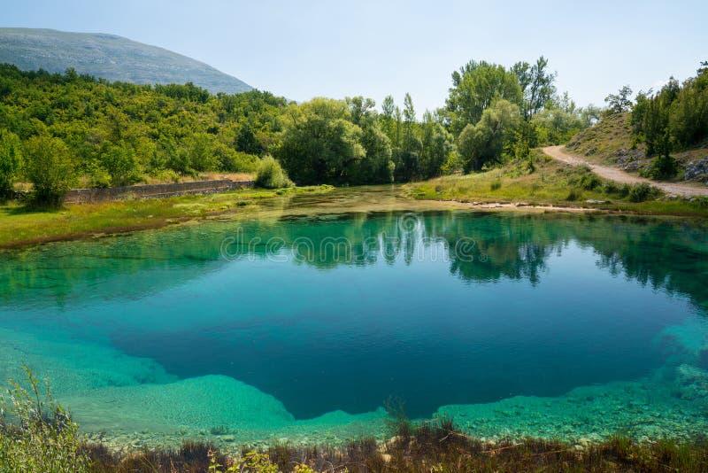 Cetina źródła wody wiosna w Chorwacja zdjęcia royalty free