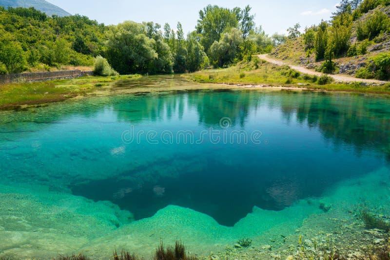 Cetina źródła wody wiosna w Chorwacja obrazy royalty free