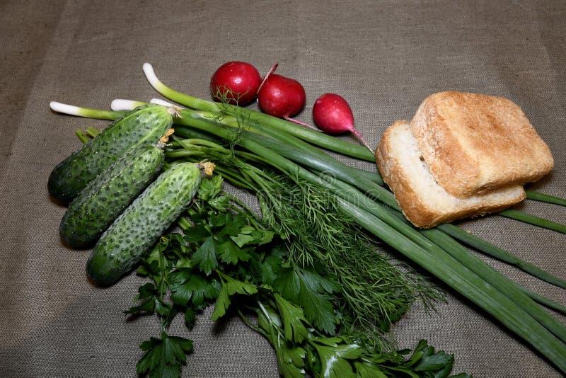 Cetrioli, cipolle, prezzemolo, ravanello con aneto e pane sulla tovaglia immagini stock