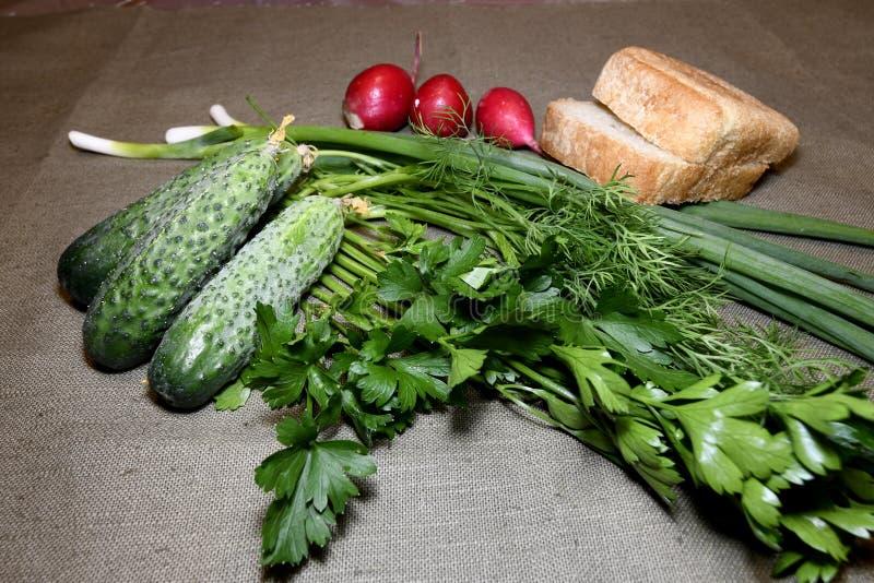 Cetrioli, cipolle, prezzemolo, ravanello con aneto e pane sulla tovaglia fotografia stock libera da diritti
