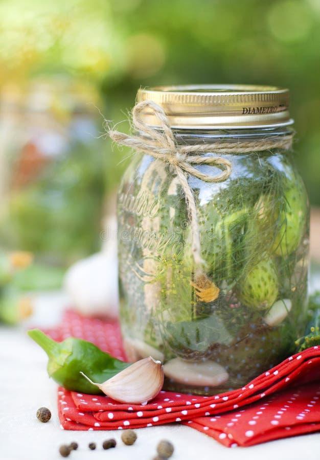 Cetrioli salati casalinghi in barattolo di vetro fotografia stock libera da diritti