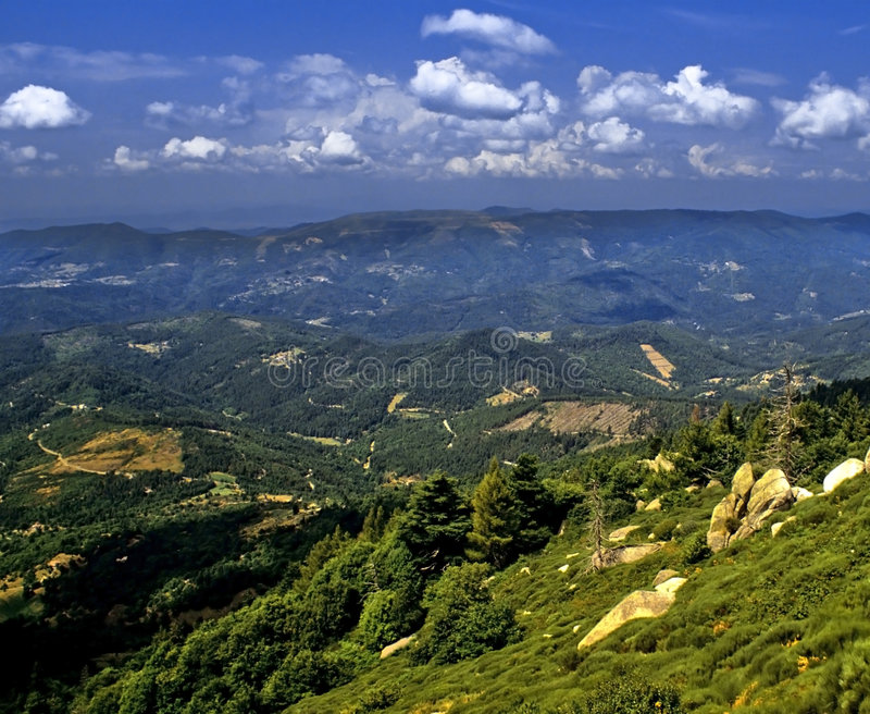 Cevennes royalty free stock images