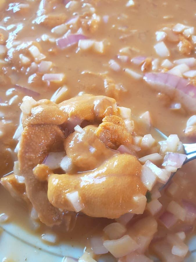 Ceviche мальчишкаа моря стоковые фотографии rf