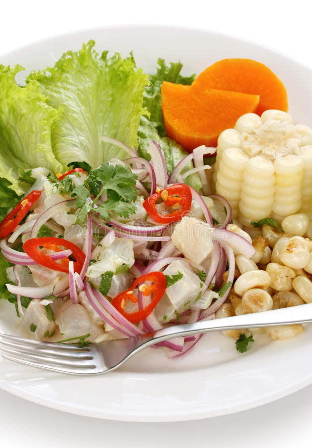 Ceviche, seafood dish, peruvian cuisine. On a white background royalty free stock photography