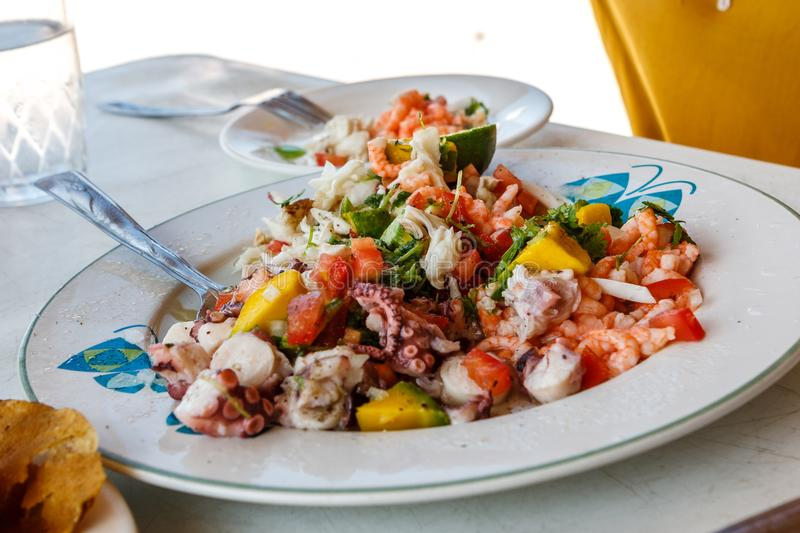 Ceviche, traditional fish dressed with coriander and lime, Celestun, Yucatan, Mexico stock images