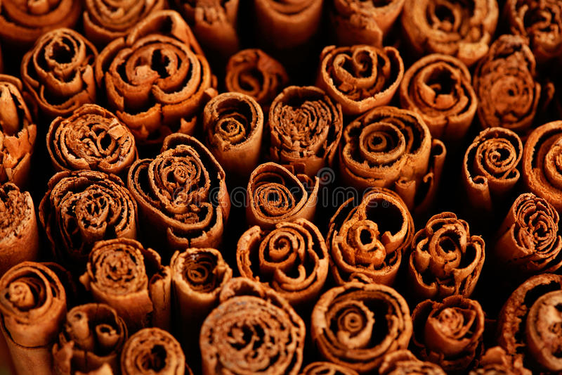 Ceylon cinnamon stock images