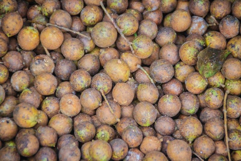 Ceylon Dębowe owoc lub Kusum owoc dla sprzedaży przy miejscowego rynkiem (Schleichera oleosa) Schleichera oleosa w Tajlandia, ten obrazy royalty free