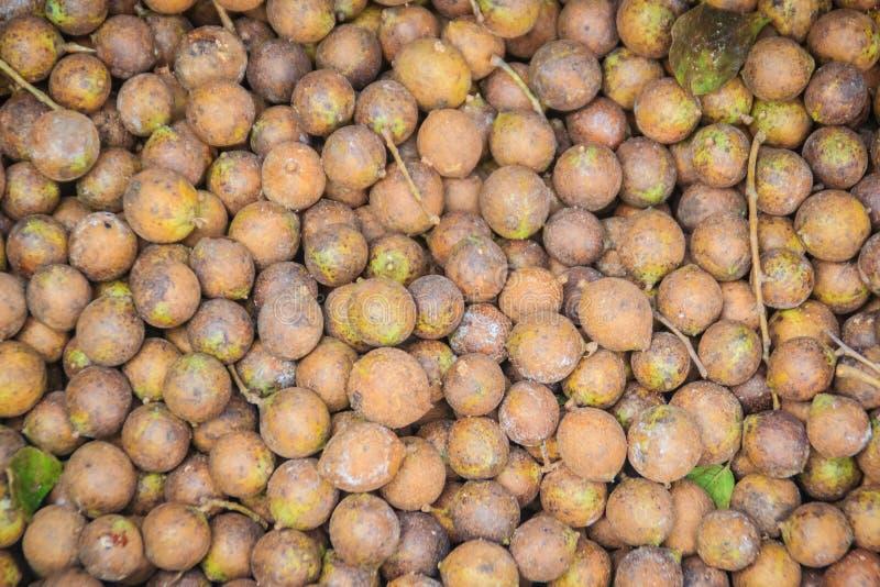 Ceylon Dębowe owoc lub Kusum owoc dla sprzedaży przy miejscowego rynkiem (Schleichera oleosa) Schleichera oleosa w Tajlandia, ten zdjęcie royalty free
