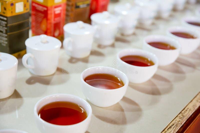 Ceylon degustation filiżanek zbliżenia herbaciany widok obraz stock