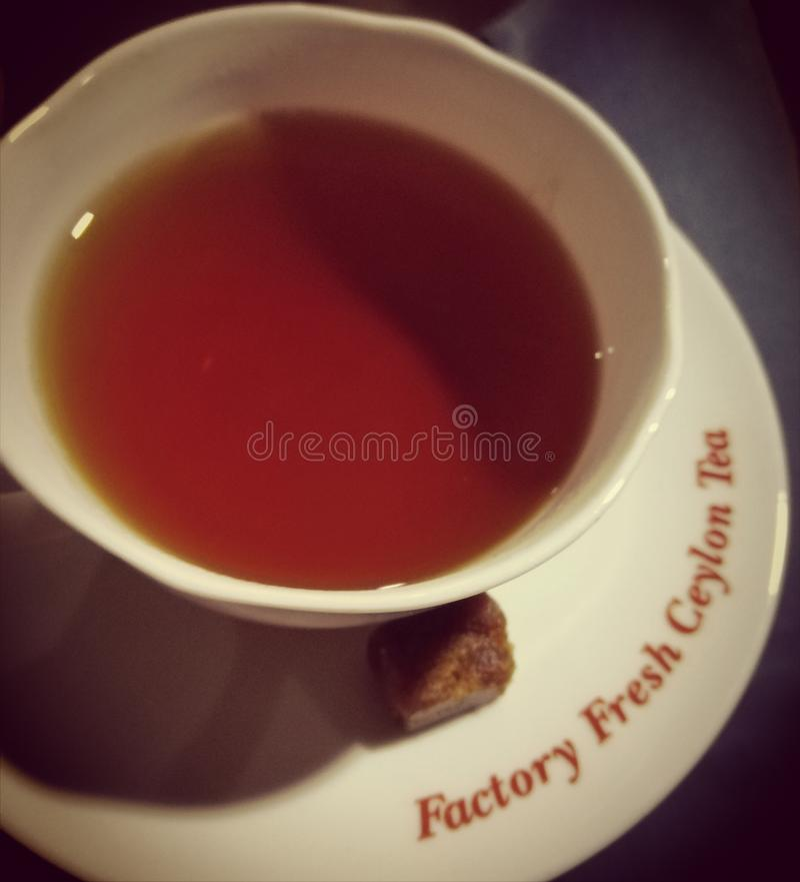 Ceylon herbata zdjęcia stock