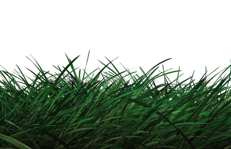 cg-gräs stock illustrationer