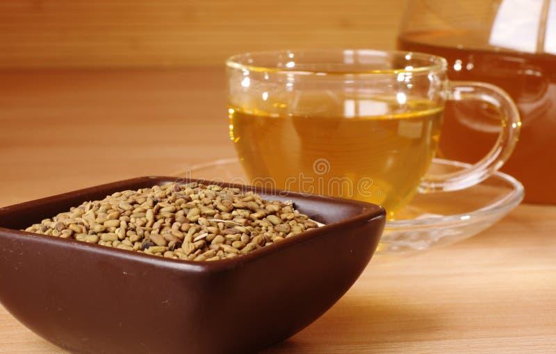 Chá amarelo egípcio fotografia de stock