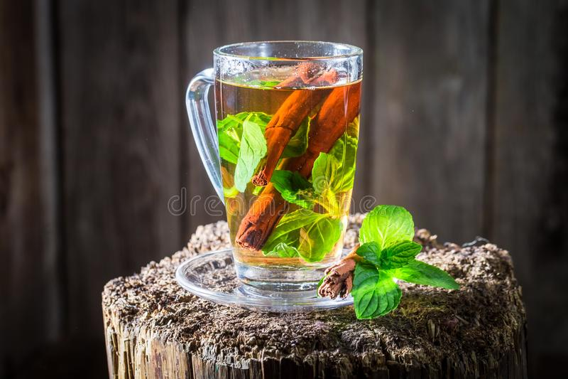 Chá aromático e fresco com as folhas da casca e do verde de canela fotografia de stock