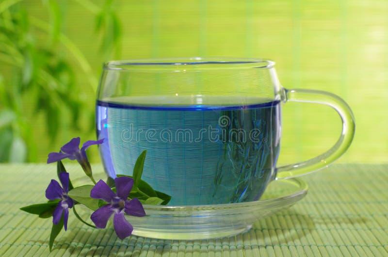 Chá azul imagem de stock