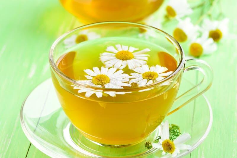 Chá com as flores da camomila no copo de vidro fotos de stock