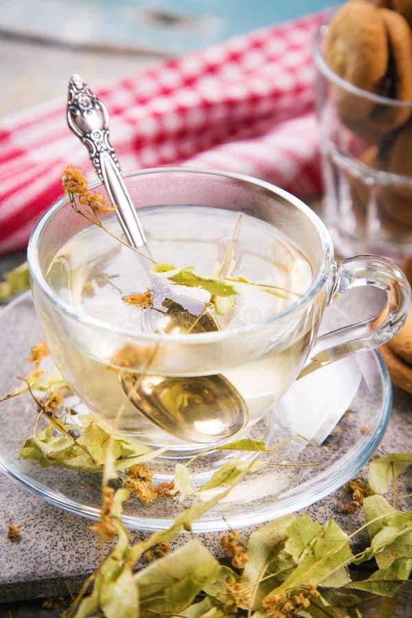 Chá com Linden fotos de stock royalty free