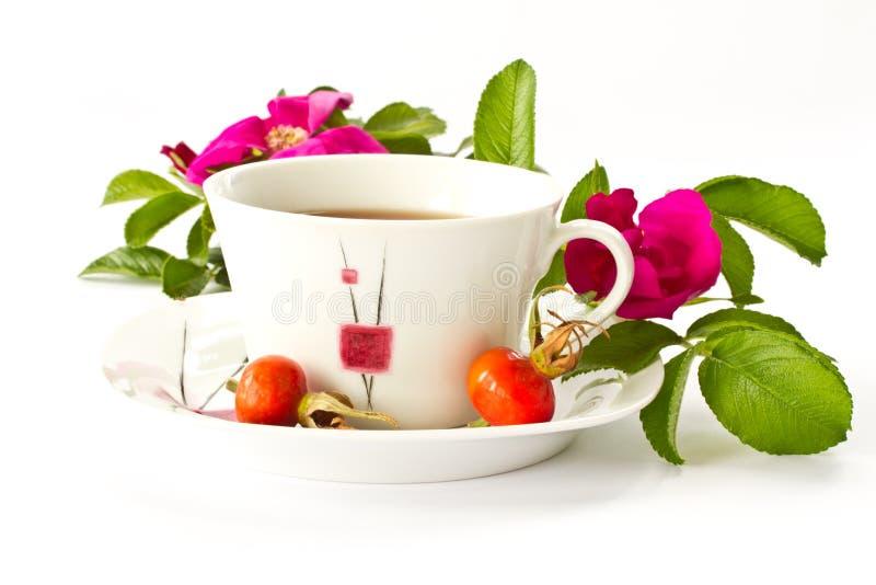 Chá com rosehip fotos de stock