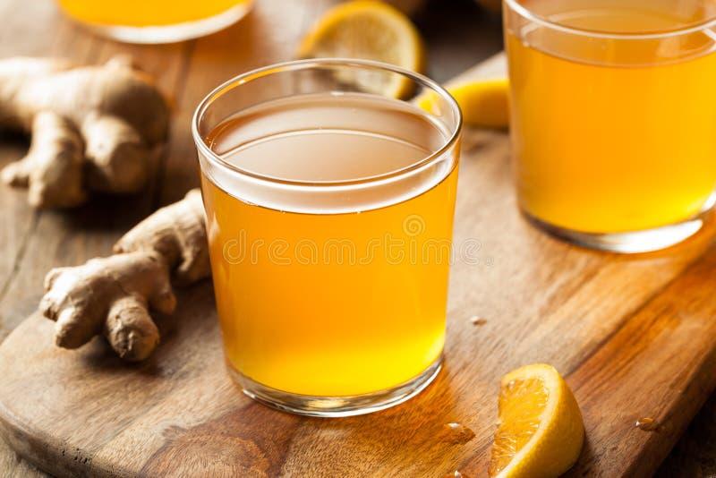 Chá cru fermentado caseiro de Kombucha imagens de stock royalty free