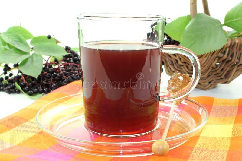 Chá da baga de sabugueiro foto de stock royalty free