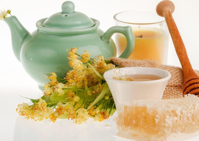 Chá da flor da árvore de Linden fotografia de stock