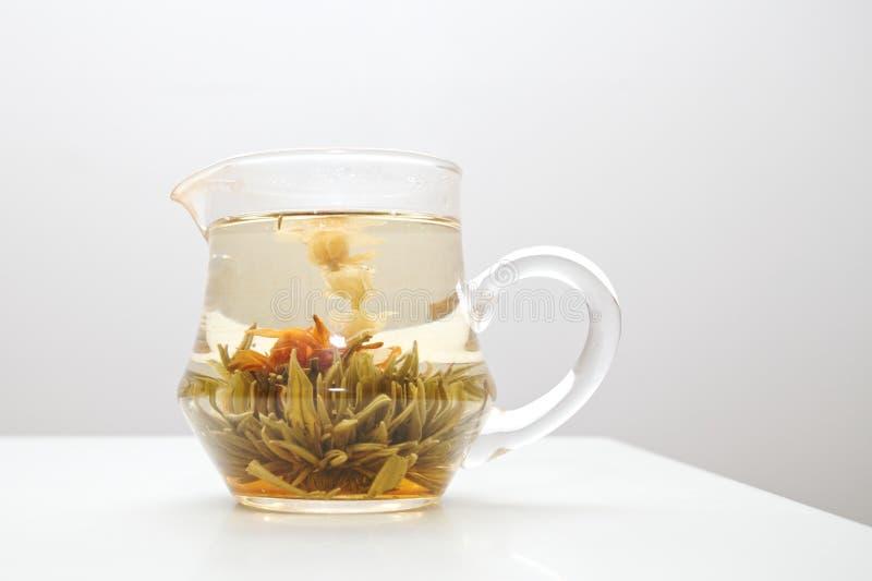 Chá da flor do jasmim fotografia de stock royalty free