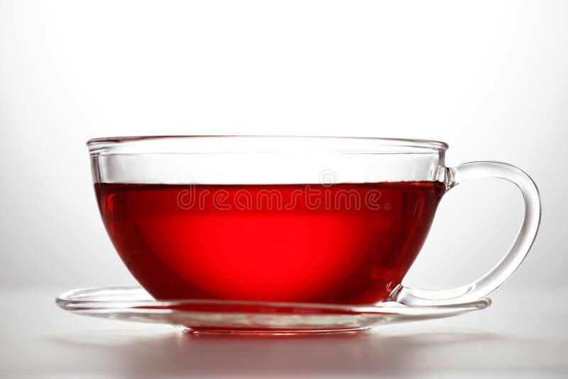 Chá da fruta imagens de stock royalty free